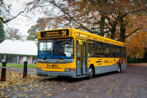 Stagecoach Introduces New No. 26 'Go Wild' Bus Service! Image